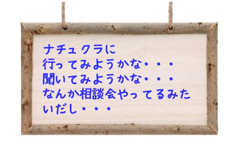 『新築・リフォーム相談会』